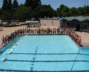 City of mountain view aquatics pools for Citywide aquatics division swimming pool slide