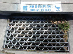 No Dumping sign stenciled on sidewalk near storm drain